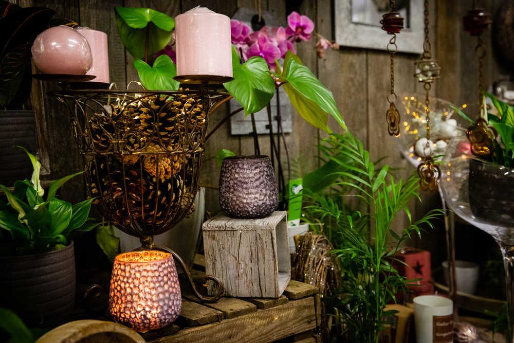 Květinové studio   Studio Petronila   Kutná Hora